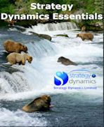 Cover image - 'Strategy Dynamics Essentials'